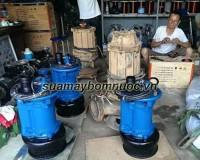 Những dòng máy bơm nước thải phổ biến nhất tại Việt Nam hiện nay thumbnail